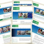 syndex website